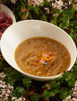 ORGANIC CREAM OF VEGETABLE SOUP WITH GRASS-FED BEEF